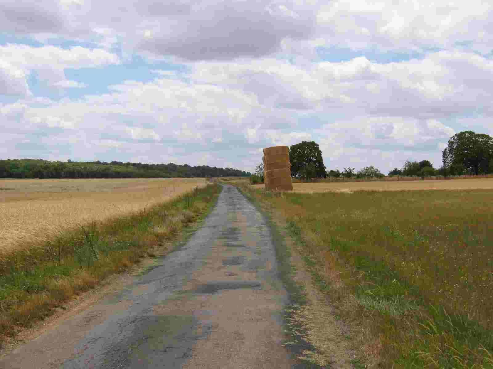 .... 732 n. C.die Schlacht zwischen Tours und Poitiers?