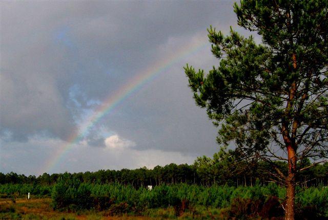 """der Regenbogen vorher bedeutet, der nächste Schauer nähert sich bereits in Windeseile"""""""