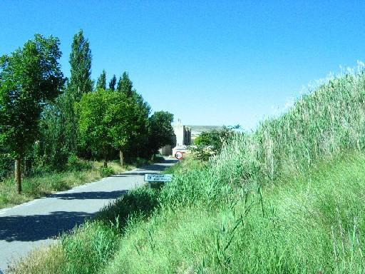 eine schattige Allee bei San Anton