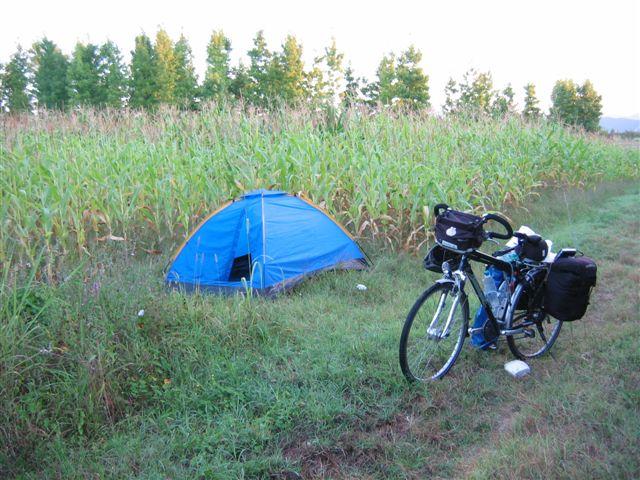 eine Nacht am Maisfeld